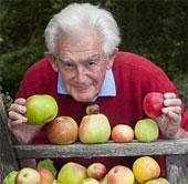 """Cây táo """"độc"""" với 50 giống táo khác nhau trên 1 cây"""