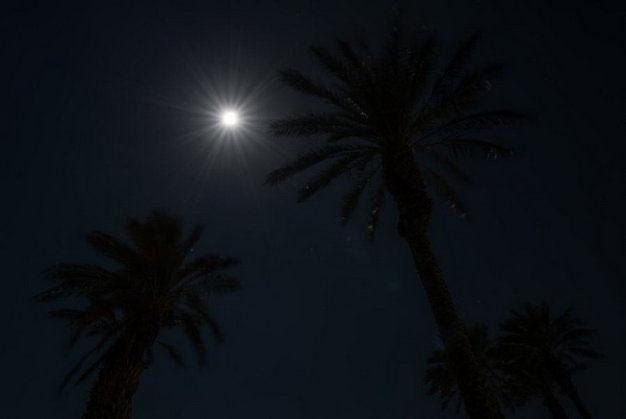 Cùng chiêm ngưỡng hình ảnh về siêu trăng cuối cùng của năm