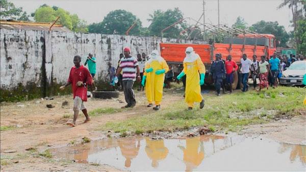 Nguồn lây lan virus Ebola tại Liberia