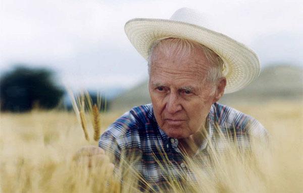 """5 năm ngày mất của Norman Borlaug - Cha đẻ của cuộc """"cách mạng xanh"""""""