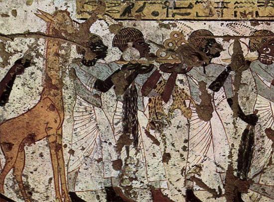 Nghiên cứu hệ sinh thái từ tranh Ai Cập cổ