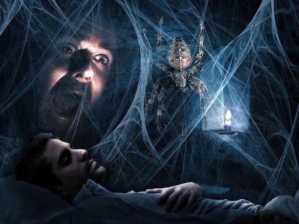 Tìm ra nguyên nhân thực sự của hội chứng sợ nhện