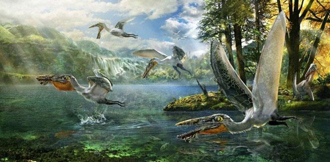 Phát hiện hóa thạch thằn lằn bay bí ẩn ở Trung Quốc