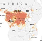 Ebola có nguy cơ bùng phát tại 15 quốc gia tại châu Phi