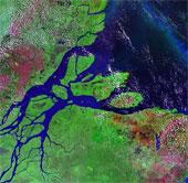 """Phát hiện """"biển nước ngọt ngầm"""" dưới lòng đất Amazon"""