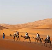 Đã tìm ra tuổi thật của sa mạc Sahara?
