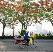 """Bộ ảnh tuyệt đẹp về """"Hà Nội - Những gánh hàng rong"""""""