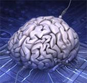 Làm nhiều việc cùng lúc không tốt cho não bộ