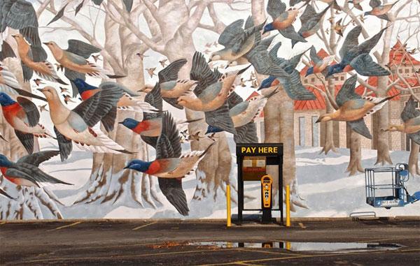 Tìm hiều về sự tồn tại của đàn chim hàng tỷ con