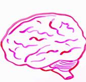 Stress gây hại đến cơ thể người như thế nào?
