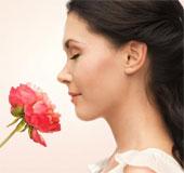 Khả năng ngửi mùi kém có nguy cơ chết sớm
