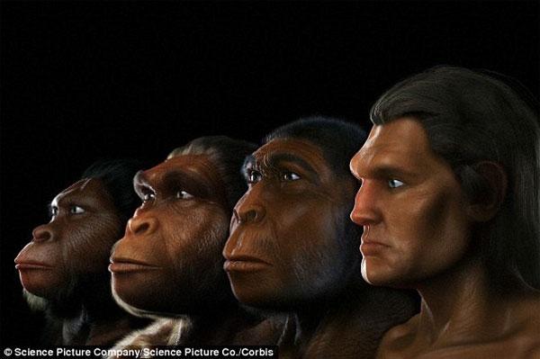 Biến đổi khí hậu làm thay đổi quá trình tiến hóa của loài người