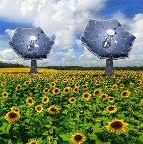 Sunflower - Hệ thống cung cấp điện và nước sạch