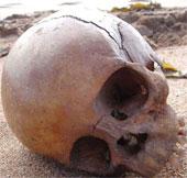 Bí ẩn bộ xương hàm 1000 tuổi bên bờ biển