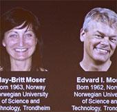 Hệ thống định vị trong não người giành giải Nobel Y học 2014