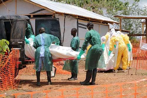 Dịch Ebola có thể tấn công châu Âu trong thời gian tới