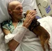 Bệnh nhân hồi phục một cách thần kỳ sau khi gặp chó cưng