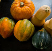 Thực phẩm màu cam giúp ngăn ngừa ung thư vú