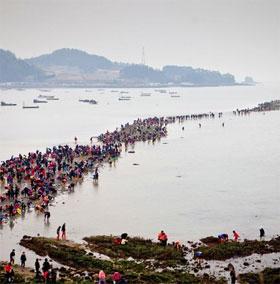 """Giải mã bí ẩn """"biển tách làm đôi"""" ở Hàn Quốc"""