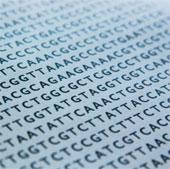 Các nhà khoa học tìm ra cách thay đổi bộ gene ở người