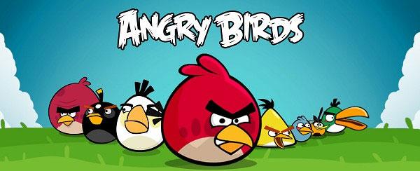 Bắt gặp chim cú cau có được xem là Angry Bird phiên bản đời thực