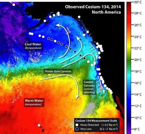 Phóng xạ Fukushima lan đến bờ biển Mỹ