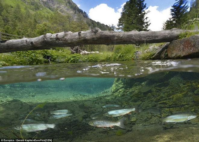 Ngất ngây vẻ đẹp huyền ảo, hoang sơ của hồ nước khi băng tan