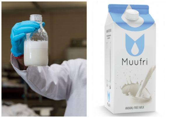 Sản xuất thành công sữa nhân tạo