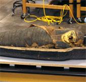 Nghiên cứu xác ướp 2.500 năm của cậu bé 14 tuổi