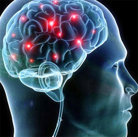10 điều kỳ lạ của bộ não