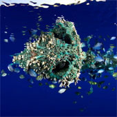 269.000 tấn nhựa ô nhiễm trôi lềnh bềnh trên đại dương