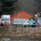 Chủng cúm gia cầm H5N8 xuất hiện trong trại nuôi gà ở Bắc Italy