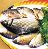 Ăn cá để sống khỏe