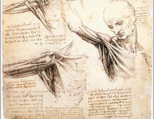 5 thiết kế vượt thời gian của Leonardo da Vinci