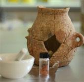 Dầu oliu 8.000 năm tuổi