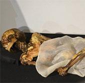 Xác ướp công chúa 2.500 năm tuổi sẽ được trả về nơi chôn cất