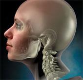 Ý thức con người liệu có tồn tại khi đầu lìa khỏi cổ?