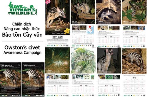 Bảo tồn cầy vằn quý hiếm ở Việt Nam