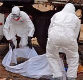 Đại học Geneva tiếp tục thử nghiệm vaccine phòng virus Ebola