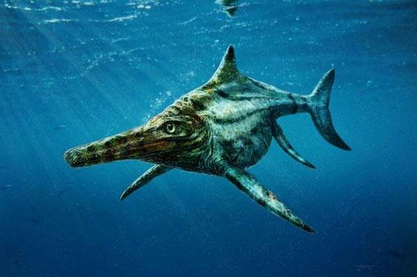 Phát hiện họ hàng thất lạc của quái vật hồ Loch Ness