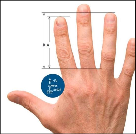 Thuật xem tay khiến giới khoa học cũng phải gật gù đồng ý