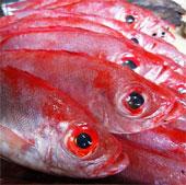 Cách nhận biết hải sản tẩm urê