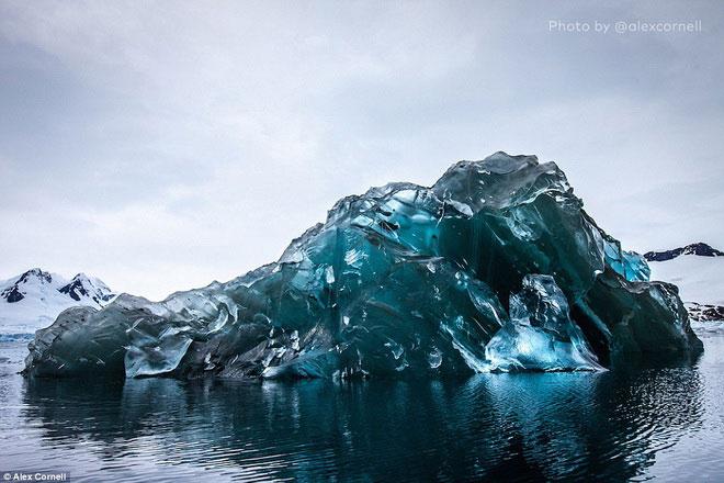 Ngỡ ngàng trước tảng băng trôi có màu xanh tuyệt đẹp