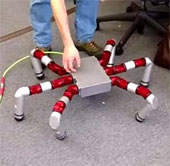 """Chế tạo """"quái vật"""" robot sáu chân"""