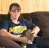 Phẫu thuật chuyển giới cho mèo