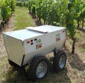 Robot giám sát vườn nho