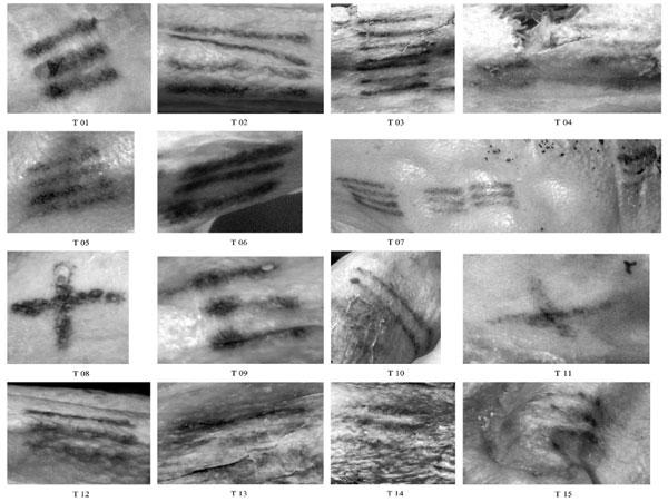 Phát hiện 61 hình xăm trên xác ướp người băng Otzi