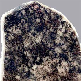 Sinh vật không tiến hóa trong hai tỷ năm