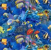 Điều gì xảy ra với các xác chết dưới lòng đại dương?