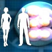 Anh là nước đầu tiên cho phép thụ tinh từ ADN ba người